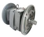立式入力法兰齿轮减速机MVF/MWF